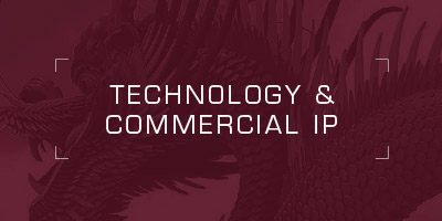 Technology & Commercial IP